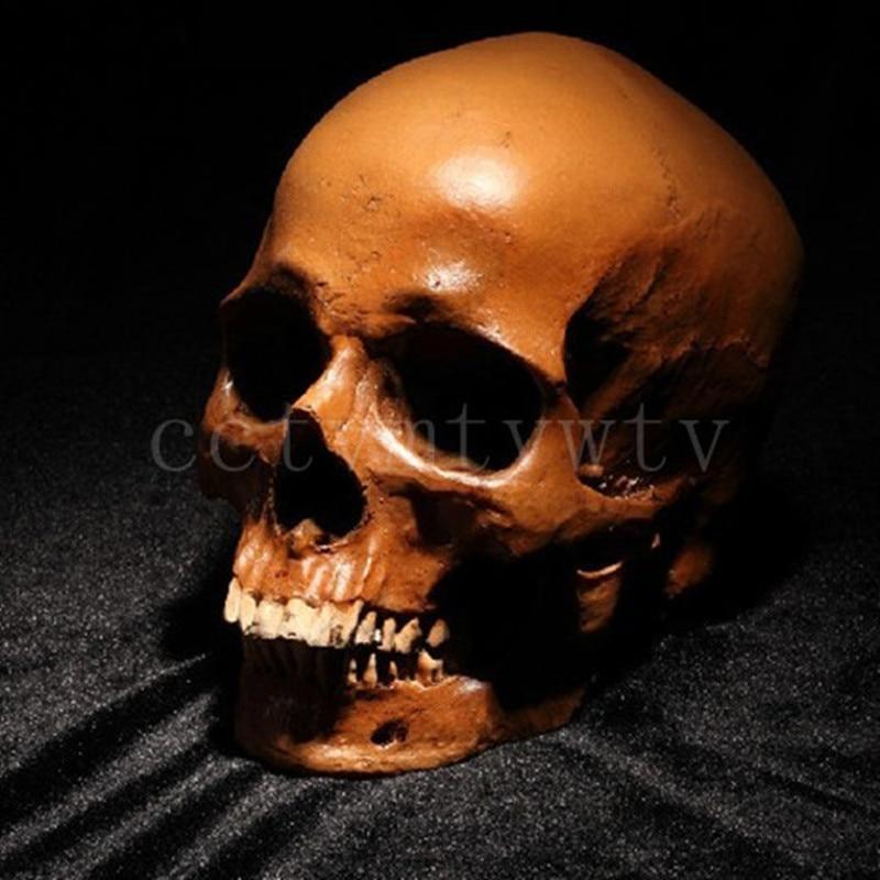 P-flame menselijke schedel replica hars ambachten model medische realistische handgemaakte woondecoratie beeldje hars beelden voor decors