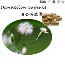 Factory price supply pure natural Dandelion root extract 800g/lot  HOT Sale