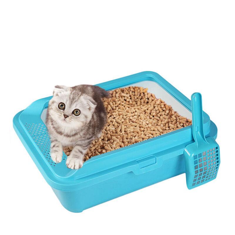 My Pet Sand Cat