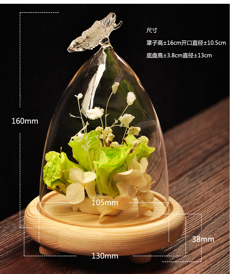 New Hot Glass Cover Landscape Vase Container Plant Flower Butterfly Decor Tray Creative Gifts DIY Home Desk Decorations