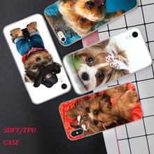 Silicone Phone Case Yorkshire terrier dog puppy Printing for iPhone XS XR Max X 8 7 6 6S Plus 5 5S SE Matte Cover