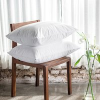 Free Shipping Terry Waterproof Allerzip Pillow Protector Pillowcase For Bed Bug And Bed Wetting Standard 21