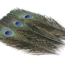 5pcs a pack Peacock Feather Earrings necklace clothing hat wedding party family wreath decorates material 10 - 12inch