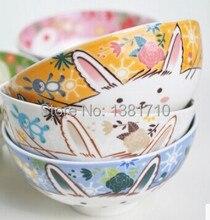 5pc/lot Lovely Cat / Rabbit Ceramic bowls rice bowl 300ML China bone bowl