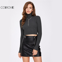 COLROVIE Rib Knit Crop Sweater Turtleneck Pullovers Grey Form Fitting Women Jumper Fall 2017 Fashion Sexy
