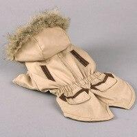 Yeni sonbahar ve kış Pomeranian köpek pet giysi VIP ceket ceket kapitone Teddy köpek giysileri