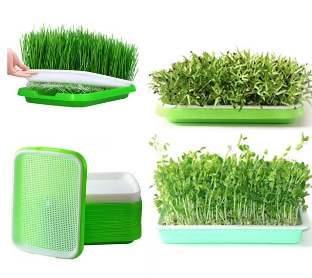 Durable Hydroponics Basket Nursery Tray Seed Nursery Pot Flower Plant Seed Germination Tray Grow Box Vegetable Seeding Tray Case