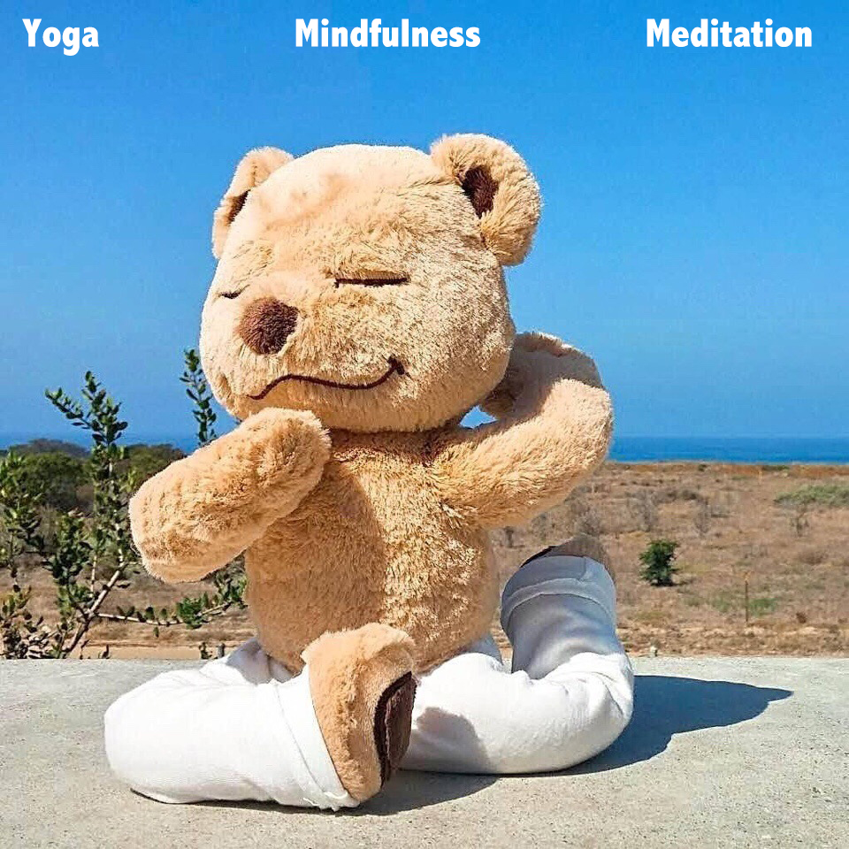 Master Bear Teaching Yoga Meditation Mindfulness In Fun With Internal Frame Allows Any Yoga Position Plush Bear Toy Kid Gift