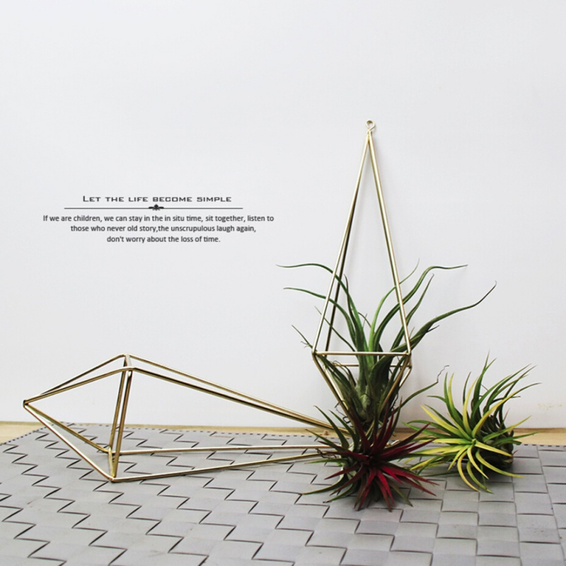 Wall Freestanding Hanging Tillandsia Air Plants Rack Rustic Metal Iron Wrought Geometric Air Plant Holder Z in Hanging Baskets from Home Garden
