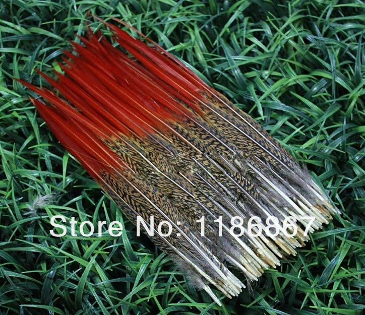 Free shipping 50pcs 15-20cm/6-8inch natrual pheasant red feathers for jewelry clothing accessories craft bulk wedding wholesale