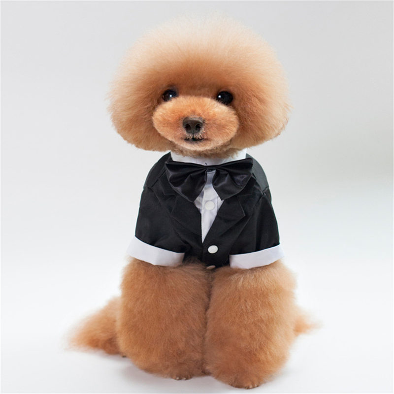 Pet Dog Clothes Cat Prince Wedding Dress Suit Cute Gentleman Cachorro Tuxedo Bow Tie Puppy Coat Supplies Pets
