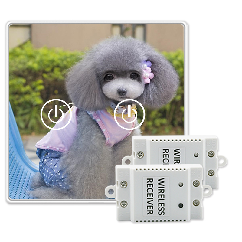 все цены на Saful Animal Picture DIY Glass Design Touch Switch 2 Gang 2 Way Remote Control Touch Wireless Switch Power for Light онлайн