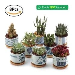 T4U Ceramic Japanese Style Serial succulent planter Plant Pot Cactus maceta bonsai Pot Flower Pot Container garden decoration