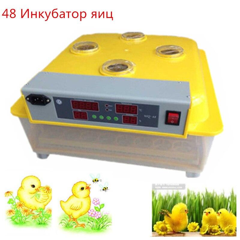 Mini Digital Chicken Incubator 48 Eggs Turning Brooder Tray Intelligent Hatchery Tools Industrial Farm Automatic Hatcher
