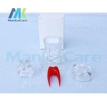 Oral Model 4 Times Dental Implant Disease Teeth Model with Restoration Bridge Tooth Model Dentist for Medical Science Teaching