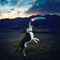 Glow Streak LED Köpek Topu Gece Oynamak için Meteor Işık Yanar K9 Led Köpek Topu Silikon Büyük Köpek Için Dayanıklı Pet Oyuncak Chew