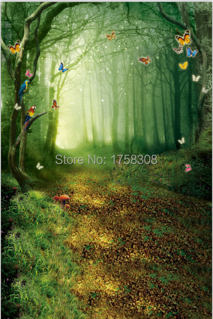 8X12ft Thin Vinyl photography backdrop Customize The forest  Studio Backdrop Digital Printing Background  CM-4947 thin vinyl vintage book shelf backdrop book case library book store printed fabric photography background f 2686