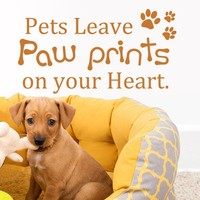 Funny Wall Decal - Pets Leave Paw Prints On Your Heart Vinyl Wall Art Love Wall Sticker 28