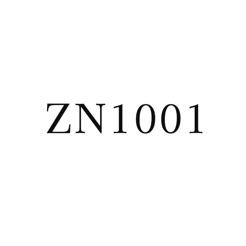 ROCKBROS los zn1001