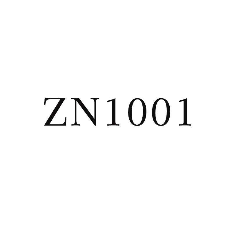 ROCKBROS zn1001