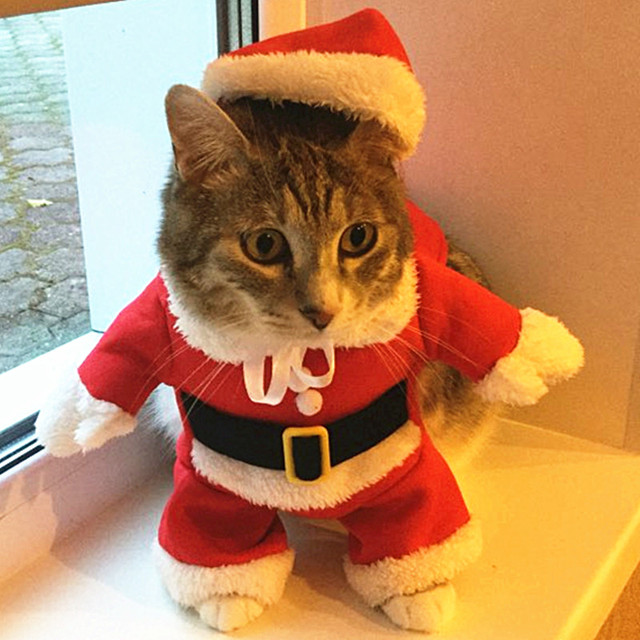 Christmas Cat Clothes Costume Clothes For Cats New Year Puppy Outfit Pet Cat  Clothes For Chihuahua - Christmas Cat Clothes Costume Clothes For Cats New Year Puppy Outfit