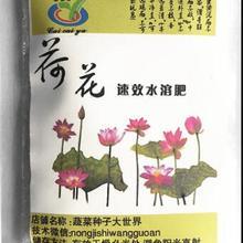 6 мешков гидропоники завод питательный раствор чаша лотоса вода цветение Эфирное жирорастворимое удобрение питательный