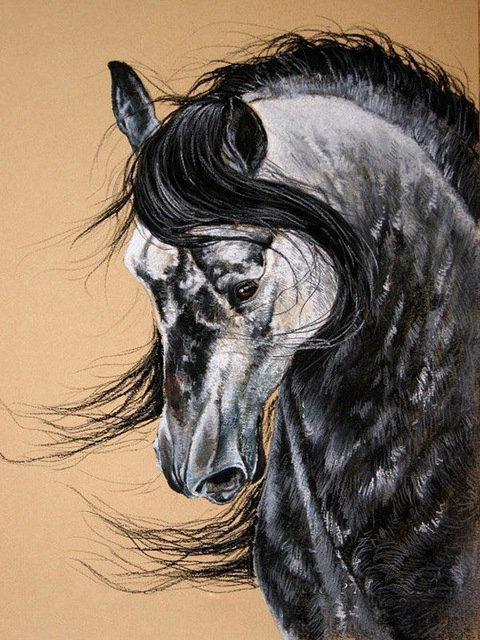 Rabid Horse Artwork Home Facebook - 736×981