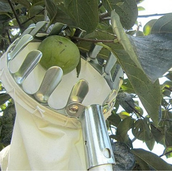 Metal Fruit Picker Convenient Fabric Orchard Gardening Apple Peach High Tree Picking Tools 1pc plastic fruit picker without pole fruit collector gardening picking tool garden tool s08 drop ship