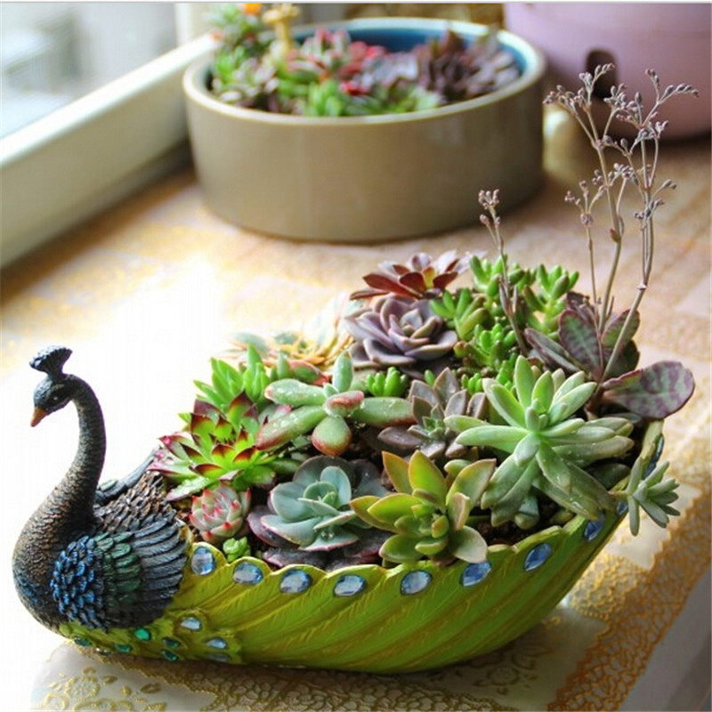 Plants For Tiny Pots: Large Medium Small Three Size 5 Colors Pastoral Simplicity