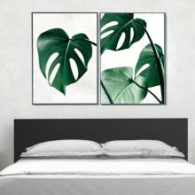Watercolor Tropical Plants Wall Paintings