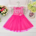 Retail new design summer beautiful lace princess dress for weddings flower girl party dress for little girl L9003