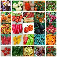Big Sale 200pcs Rainbow Pepper Seeds Multi Color Hot Peppers Chili Seeds For Home Garden Plants Pot Bonsai Paprika Sementes .