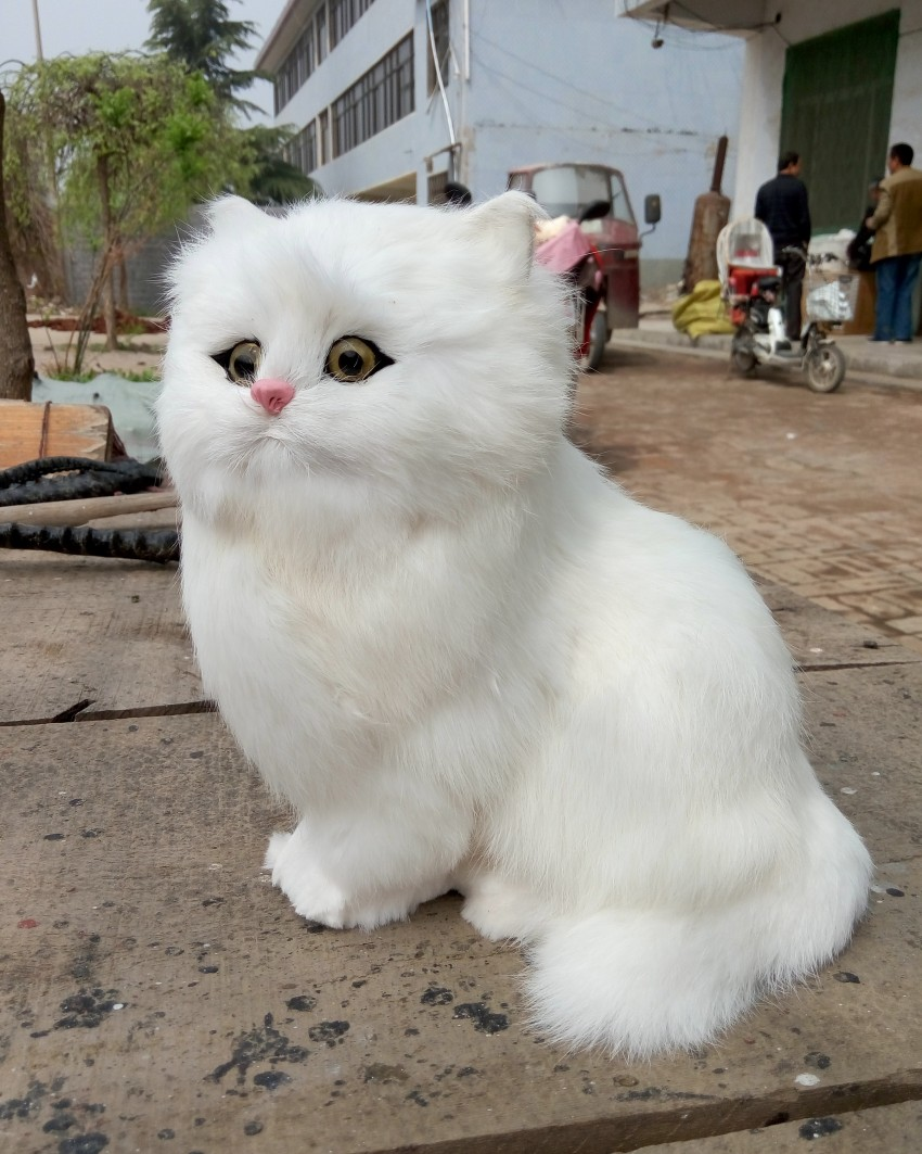 large 24x24 cm simulation white cat Model ,lifelike ,big head squatting cat model home decoration gift t186 simulation cute squatting white cat 35x15cm model polyethylene