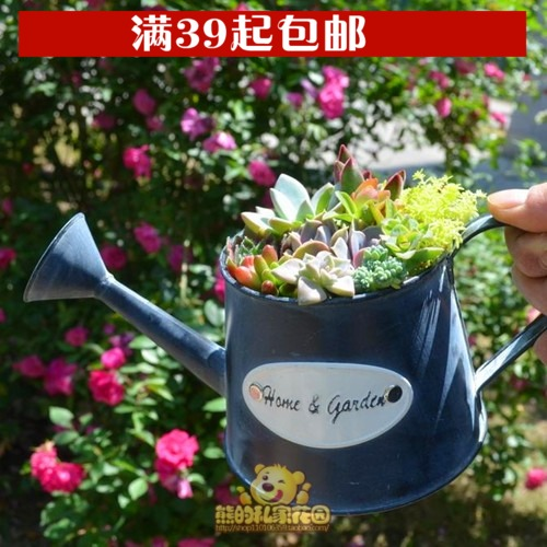 Succulents do the old retro tin flower pots American country flower organs kettle (no plants)