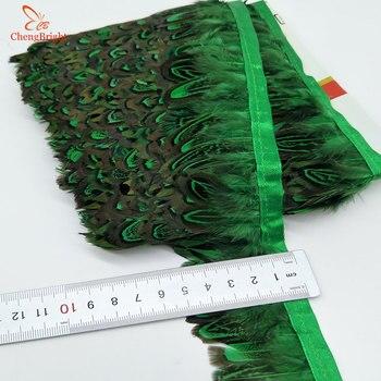 CHENGVRIGHT 4-8 cm 10 חצרות/הרבה פסיון נוצת בד חגורת FeathersTrim פרינג ', נוצת Trim בחירת שמלה/חג המולד
