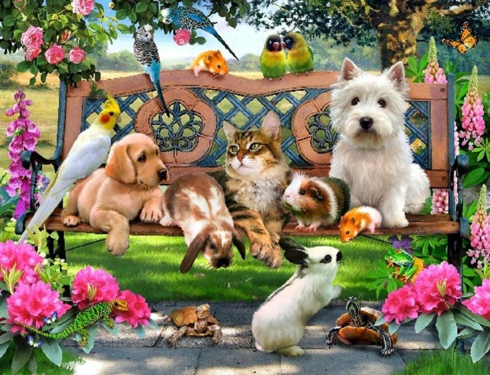 Картинка общая с животными