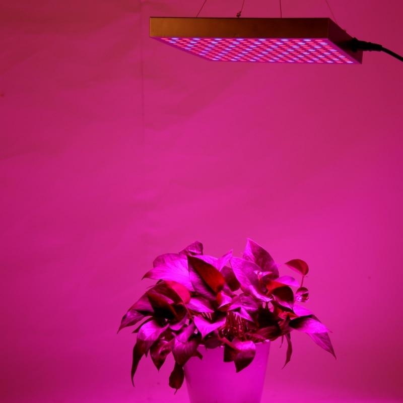 Plant Lights LED Plant Lamp Light Growlights Indoor Garden Plant Grow Light Hanging Light robert hall d annual plant reviews biology of plant metabolomics isbn 9781444339932