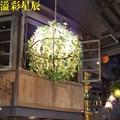 Moderne persönlichkeit pflanzen anhänger licht Musik Bar Pub anlage Cafe balkon dekorative lampe-in Pendelleuchten aus Licht & Beleuchtung bei