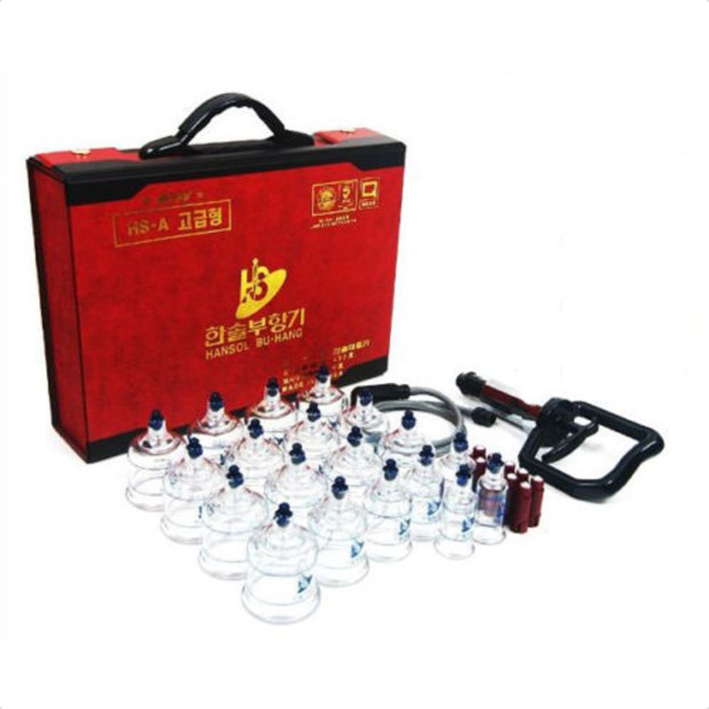 Hansol Professional Cupping Therapy Equipment Set With Pumping Handle 19 Cups Acupuncture