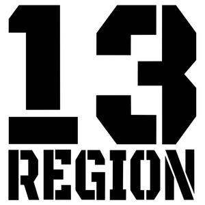 CS-1394#15*15.6cm 13 region funny car sticker vinyl decal silver/black for auto car stickers styling