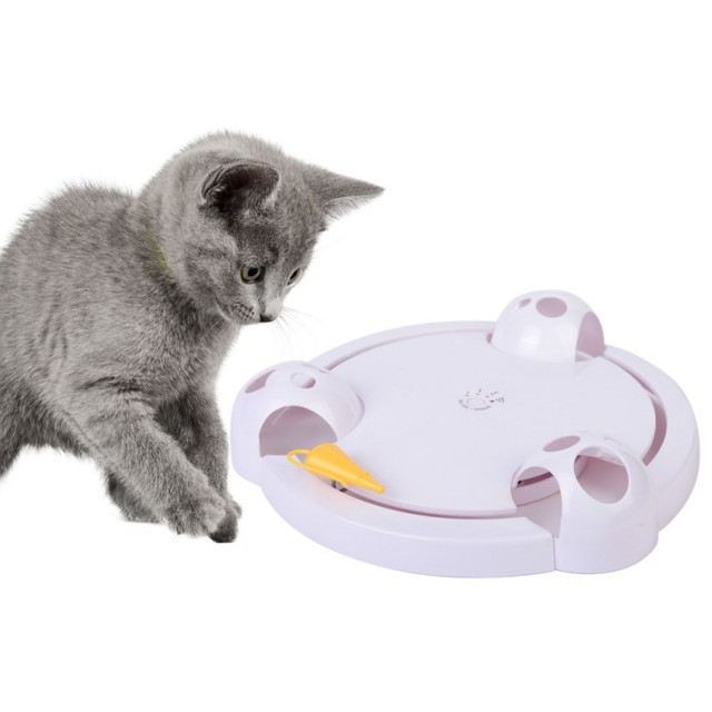 Interactive Cat Toy Teaser