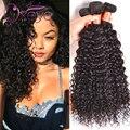 Virgin Малайзии Волос 4 Связки Волна Воды Девственные Волосы 8А класс Virgin Необработанные Человеческие Волосы Вьющиеся Переплетения Вьющиеся Волосы Девственницы волна
