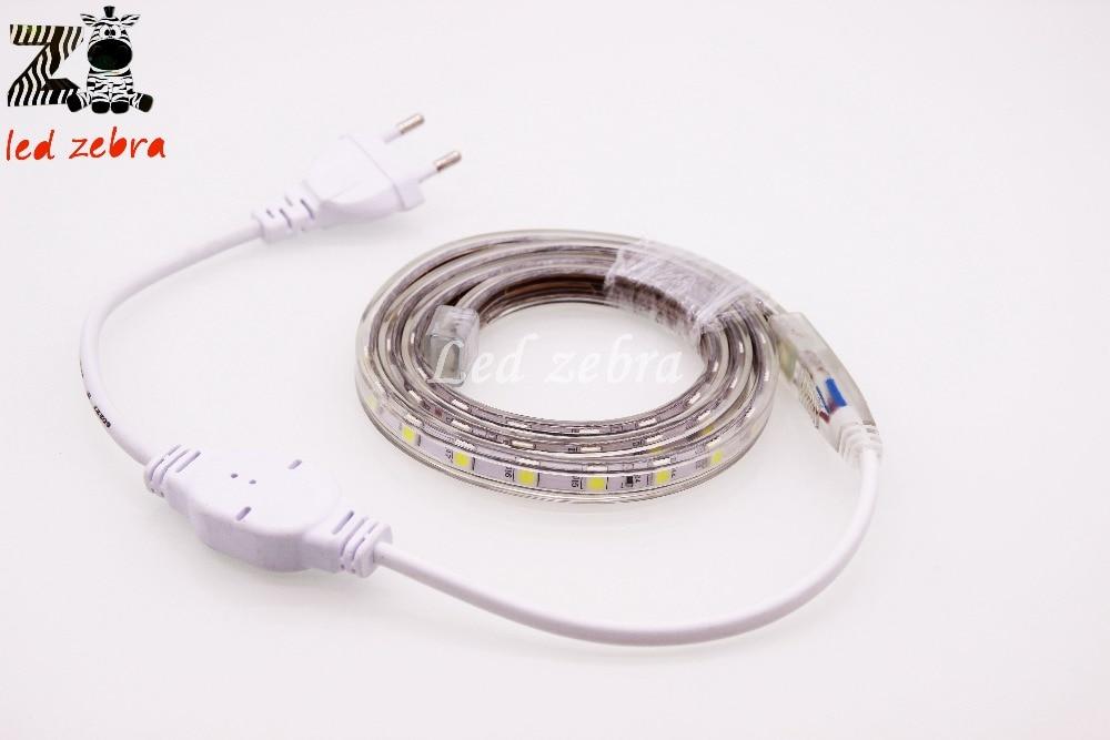 5050 SMD AC 220V Led Strip,60Led/m Waterproof Led Light With Plug,1m/2m/3m/4m/5m/10m/20m Home Decoration Led Lamps Six Color Opt