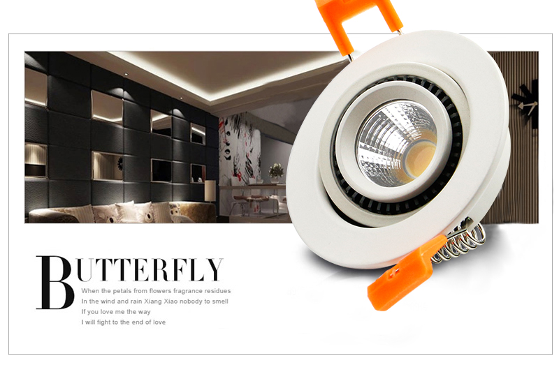 LED Downlight- (3)