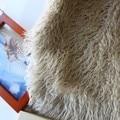 Baby photoprops 5cm Long Hair Blanket Khaki Beach Wool Faux Fur Newborn Baby Photo Props Fake Fur 150cm x 100cm