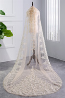 2018 New Champagne Veil Beautiful Cathedral Length Lace One layer With Comb Hot sell Wedding Brida EE9003