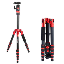 Compact Foldable Aluminum Digital camera Tripod w/Ball Head heavy Obligation Light-weight for Exterior taking pictures  Kingjoy A-1229B Maz load 6kg