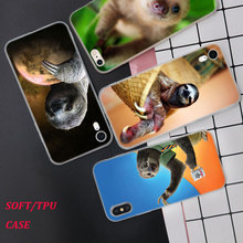 Silicone Phone Case Animal Sloth Fashion Printing for iPhone XS XR Max X 8 7 6 6S Plus 5 5S SE Phone Case Matte Cover стоимость