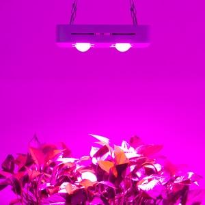 Image 5 - CF تنمو 300W البسيطة النسخة COB الصمام تنمو ضوء الاحتباس الحراري زراعة النباتات المائية مصباح الطيف الكامل استبدال UFO تنمو الإضاءة