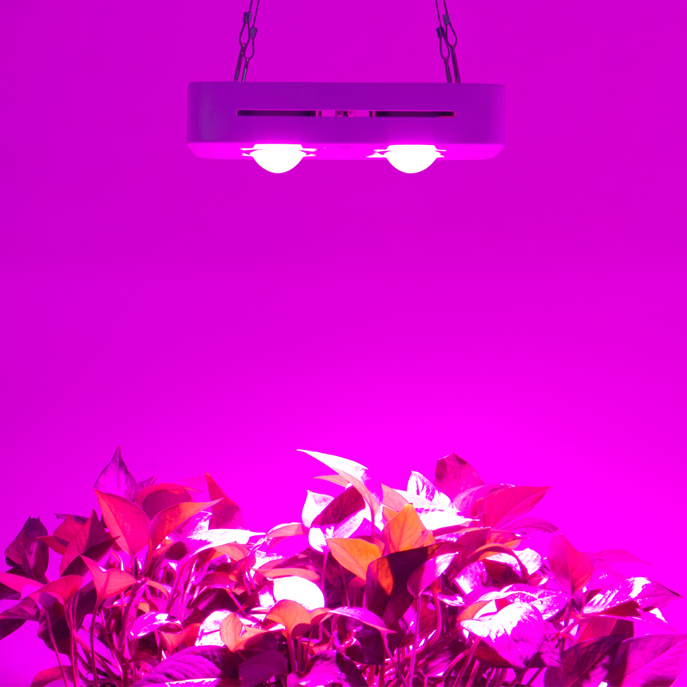 CF Grow 300W Mini Version COB LED Grow Light Greenhouse Hydroponic Plant Growing Lamp Full Spectrum Replace UFO Grow Lighting